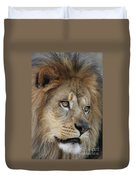 African Lion #5 Duvet Cover