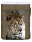 African Lion #8 Duvet Cover