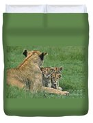 African Lion Cubs Study The Photographer Tanzania Duvet Cover