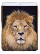 African Lion Male Portrait Duvet Cover