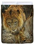 African Lions 6 Duvet Cover