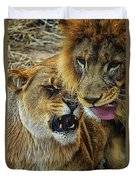 African Lions 7 Duvet Cover