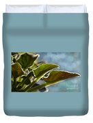 African Violet Leaves With Bokeh   Duvet Cover