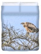 African White-backed Vulture Duvet Cover