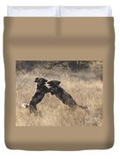 African Wild Dogs Playing Lycaon Pictus Duvet Cover