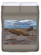 Agate Bridge In Petrified Forest National Park-arizona Duvet Cover