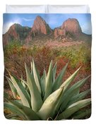 Agave And The Chisos Mountains Duvet Cover