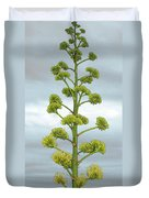 Agave Flower Spike Duvet Cover