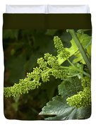 Agriculture - Cluster Of Wine Grape Duvet Cover