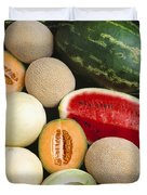 Agriculture - Mixed Melons, Watermelon Duvet Cover