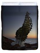 Ahinahina - Silversword - Argyroxiphium Sandwicense - Summit Haleakala Maui Hawaii Duvet Cover