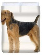 Airedale Terrier Dog Duvet Cover