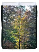 Alabama Forest In Autumn 2012 Duvet Cover