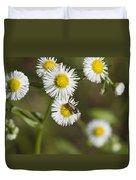Alabama Wildflower Robin's Plantain - Erigeron Pulchellus Duvet Cover