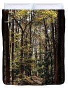 Alabama Woodlands In Spring 2013 Duvet Cover