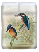 Alcedo Ispida Plate From The Birds Of Great Britain By John Gould Duvet Cover