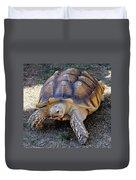 Aldabra Tortoise Duvet Cover