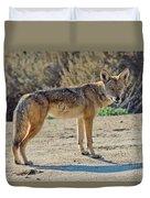 Alert Coyote Duvet Cover