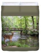 Alert Deer By Bridge In Cades Cove Duvet Cover