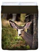 All Ears - Mule Deer Fawn - Casper Mountain - Casper Wyoming Duvet Cover