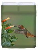 Allens Hummingbird Feeding Duvet Cover