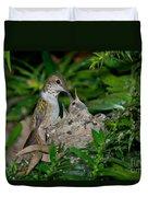Allens Hummingbird Feeds Young Duvet Cover