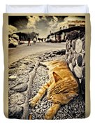 Alley Cat Siesta In Grunge Duvet Cover by Meirion Matthias