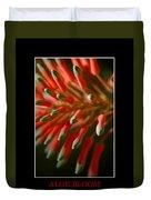 Aloe Bloom Window 3 Duvet Cover