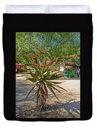 Aloe Plant In Kruger National Park-south Africa Duvet Cover