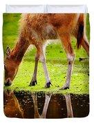 Along The Water Grazing Pere David's Deer Duvet Cover