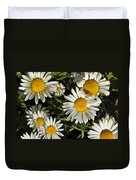 Alpine Daisies In Glacier National Park Duvet Cover