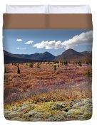 Alpine Landscape In Fall Duvet Cover