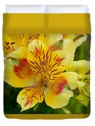 Alstroemerias Flower 1 Duvet Cover