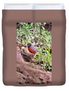 Am Robin Duvet Cover