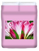 Amaryllis Flowers And Buds In The Rain Duvet Cover