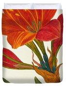 Amaryllis Purpurea Duvet Cover