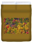 Amazing Cloudland In The Fall Duvet Cover