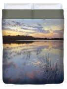 American Alligator Everglades Np Florida Duvet Cover