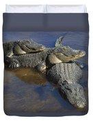 American Alligators In Shallows Florida Duvet Cover