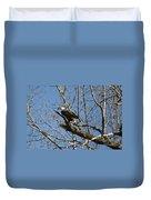 American Bald Eagle In Illinois Duvet Cover