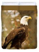 American Bald Eagle Resting Duvet Cover by Douglas Barnett