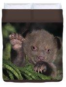 American Black Bear Cub Wildlife Rescue Duvet Cover