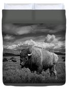 American Buffalo Or Bison In The Grand Teton National Park Duvet Cover