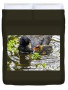 American Coot And Chick Duvet Cover