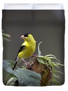 American Goldfinch 5 Duvet Cover