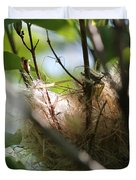 American Goldfinch Nest Under Construction Duvet Cover