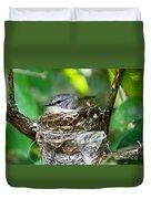 American Redstart Nest Duvet Cover