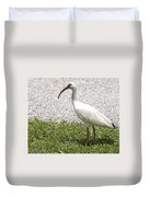 American White Ibis Poster Look Duvet Cover