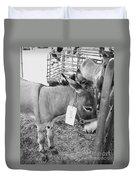 Amish Donkey At Action Duvet Cover