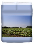 Amish Tobacco Fields Duvet Cover